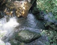 water02.jpg